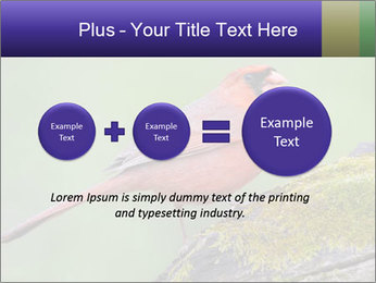 0000072560 PowerPoint Template - Slide 75