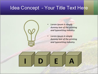0000072560 PowerPoint Template - Slide 80