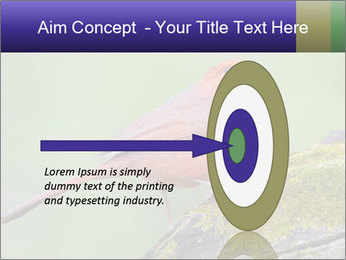 0000072560 PowerPoint Template - Slide 83