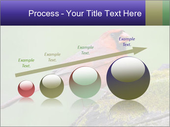 0000072560 PowerPoint Template - Slide 87