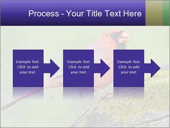 0000072560 PowerPoint Template - Slide 88