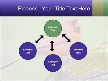 0000072560 PowerPoint Template - Slide 91