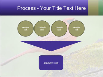 0000072560 PowerPoint Template - Slide 93