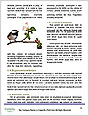 0000072560 Word Templates - Page 4