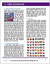 0000072562 Word Template - Page 3