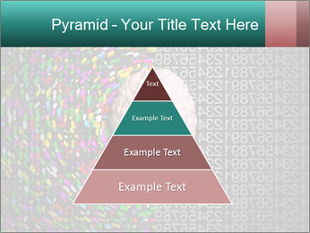 0000072572 PowerPoint Templates - Slide 30