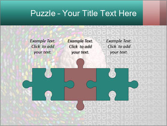 0000072572 PowerPoint Templates - Slide 42