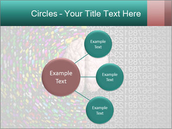 0000072572 PowerPoint Templates - Slide 79