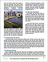 0000072574 Word Template - Page 4
