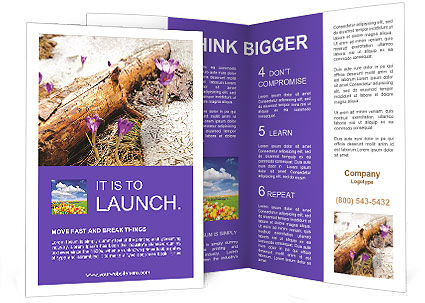 0000072575 Brochure Template