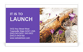 0000072575 Business Card Template