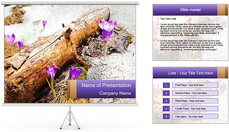 0000072575 PowerPoint Template