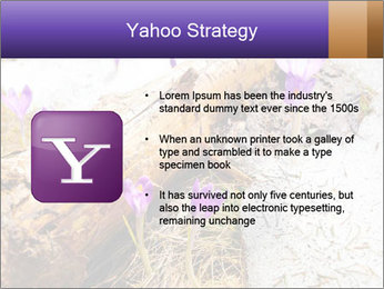 0000072575 PowerPoint Templates - Slide 11