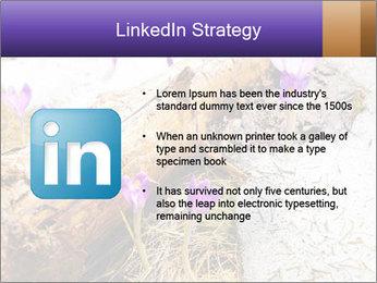 0000072575 PowerPoint Templates - Slide 12