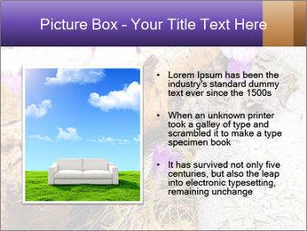 0000072575 PowerPoint Templates - Slide 13