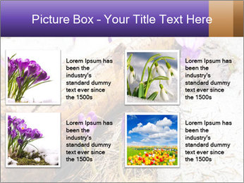 0000072575 PowerPoint Template - Slide 14