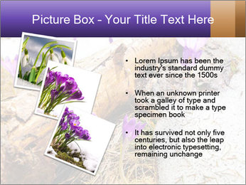 0000072575 PowerPoint Template - Slide 17