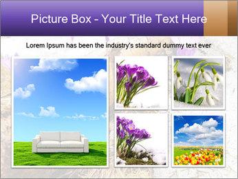 0000072575 PowerPoint Templates - Slide 19