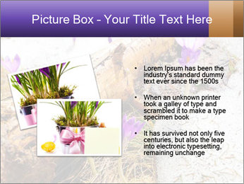0000072575 PowerPoint Templates - Slide 20