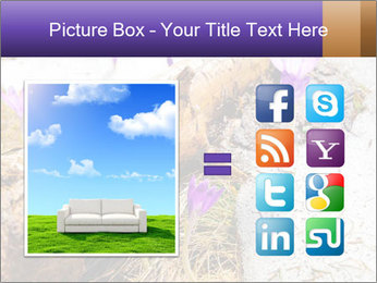 0000072575 PowerPoint Templates - Slide 21