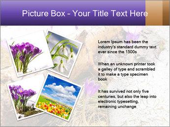 0000072575 PowerPoint Templates - Slide 23