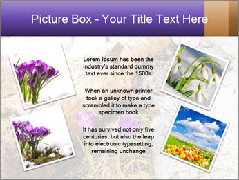 0000072575 PowerPoint Templates - Slide 24