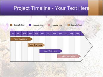 0000072575 PowerPoint Templates - Slide 25