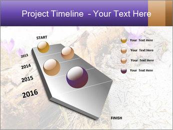 0000072575 PowerPoint Templates - Slide 26