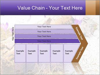 0000072575 PowerPoint Templates - Slide 27