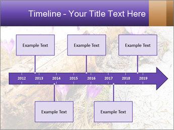 0000072575 PowerPoint Template - Slide 28