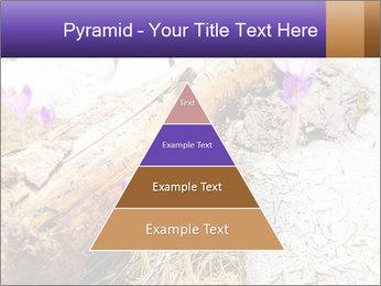 0000072575 PowerPoint Templates - Slide 30