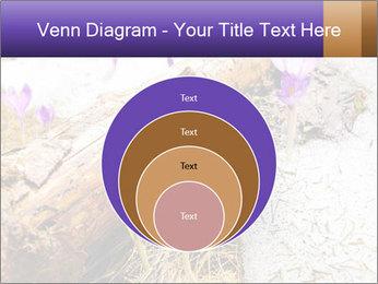 0000072575 PowerPoint Templates - Slide 34