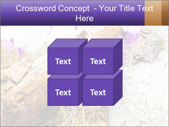0000072575 PowerPoint Templates - Slide 39