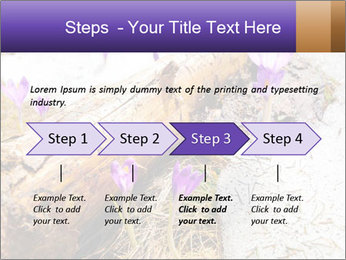 0000072575 PowerPoint Templates - Slide 4