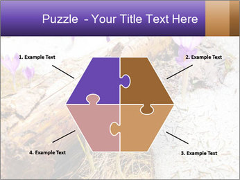 0000072575 PowerPoint Templates - Slide 40