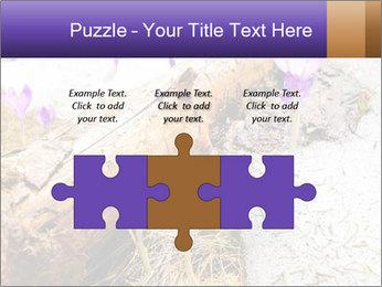 0000072575 PowerPoint Template - Slide 42