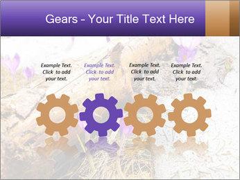 0000072575 PowerPoint Templates - Slide 48
