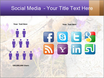 0000072575 PowerPoint Templates - Slide 5