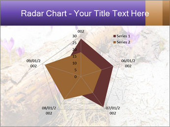 0000072575 PowerPoint Templates - Slide 51