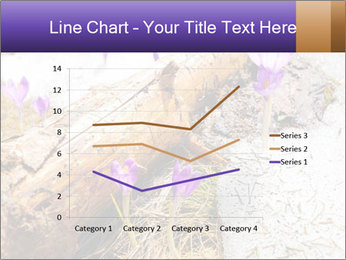 0000072575 PowerPoint Templates - Slide 54
