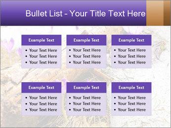 0000072575 PowerPoint Templates - Slide 56