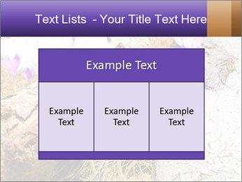 0000072575 PowerPoint Templates - Slide 59