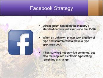 0000072575 PowerPoint Templates - Slide 6