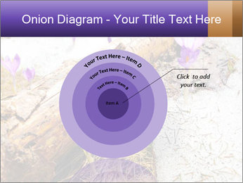 0000072575 PowerPoint Templates - Slide 61
