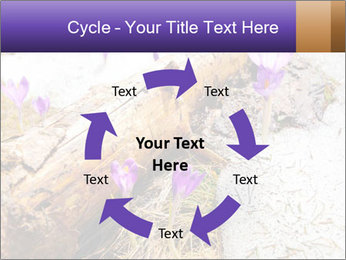 0000072575 PowerPoint Templates - Slide 62