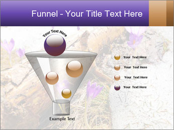 0000072575 PowerPoint Templates - Slide 63