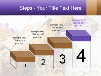 0000072575 PowerPoint Template - Slide 64