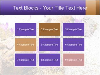 0000072575 PowerPoint Templates - Slide 68