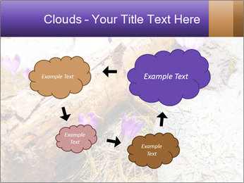 0000072575 PowerPoint Templates - Slide 72