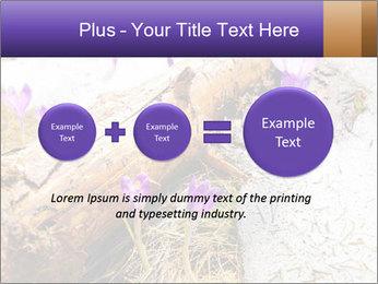 0000072575 PowerPoint Templates - Slide 75